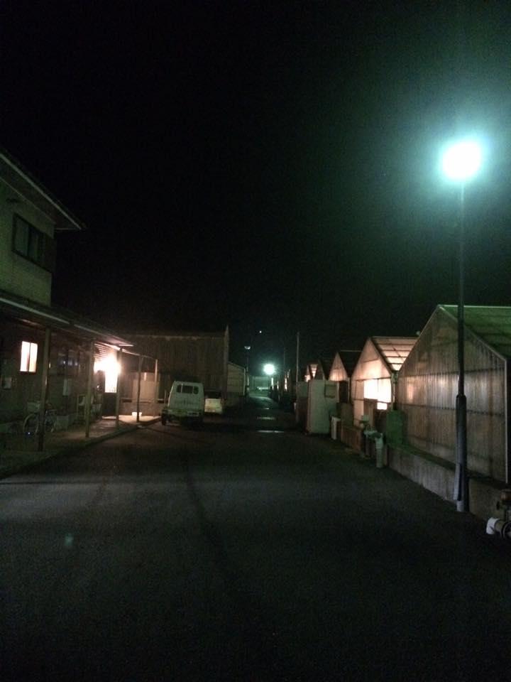 kato_unagi0101-4